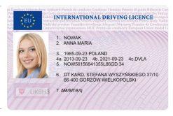 Kolekcjonerskie prawo jazdy międzynarodowe jest idealną pamiątką dla wszystkich przewoźników, którzy każdego dnia przemierzają drogi całego świata, aby transportować niezbędne przedmioty.