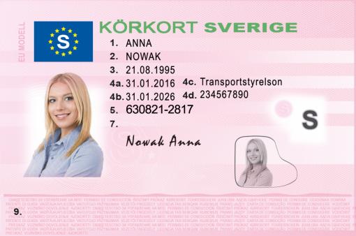 Kolekcjonerskie prawo jazdy ze Szwecji sprawi, że potop szwedzki nabierze nowego znaczenia.