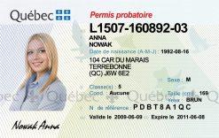 Kolekcjonerskie prawo jazdy z Kanady to wyjątkowy prezent, który sprawi, że będziesz jak hokeista grający na lodzie z syropu klonowego.