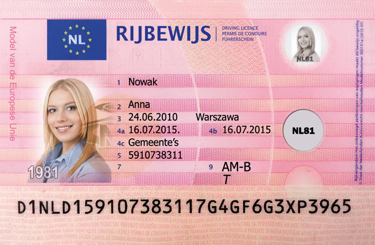 prawo-jazdy-kolekcjonerskie-holenderskie-1